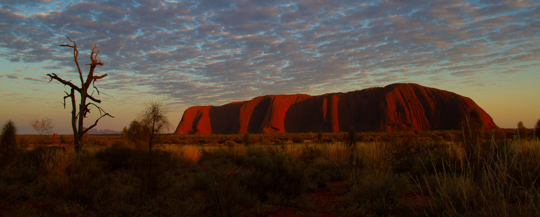Uluru at sunset, central Australia. (Photo: Tchami/Flickr)