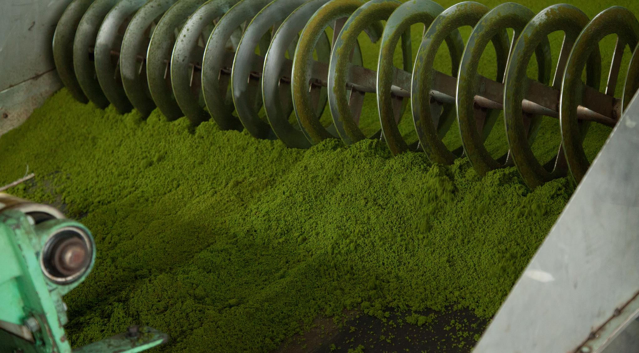 Tea processing in Rwanda (Photo: World Bank/Flickr)