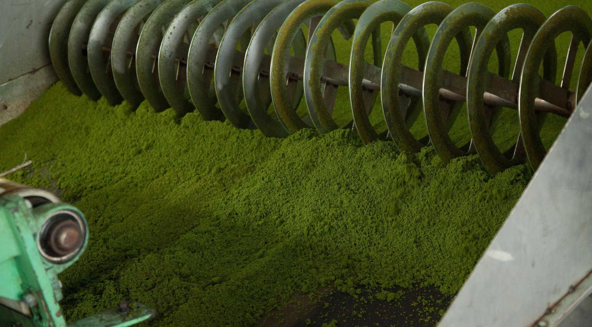 Tea processing in Rwanda (Photo: World Bank/Flickr)
