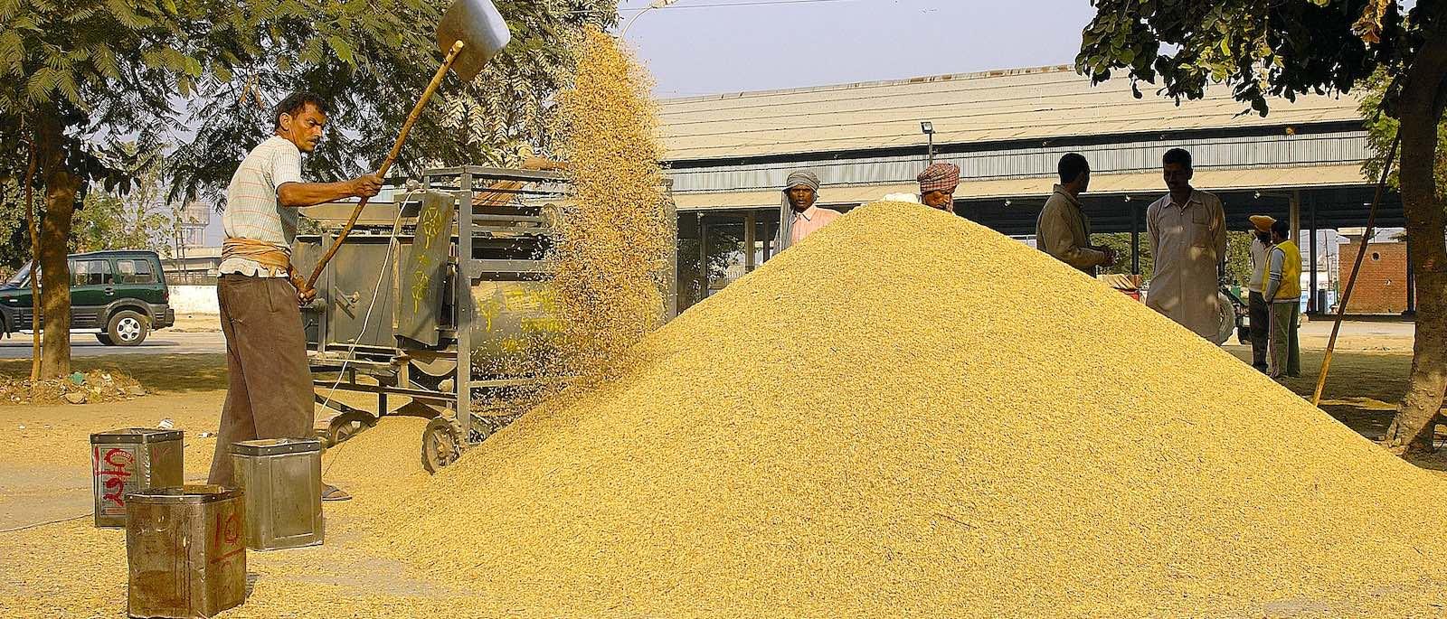 Khanna grain market, India (Photo: Giridhar Appaji Nag Y/Flickr)