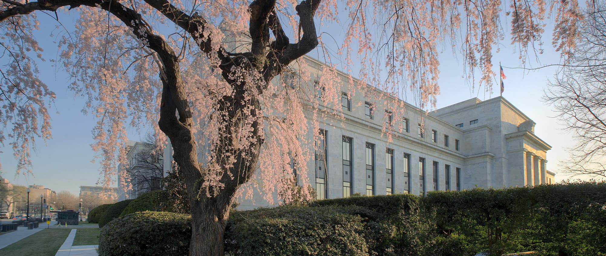 Cherry blossoms in front of the US Federal Reserve's Marriner S. Eccles Building (Photo: Federal Reserve/Flickr)