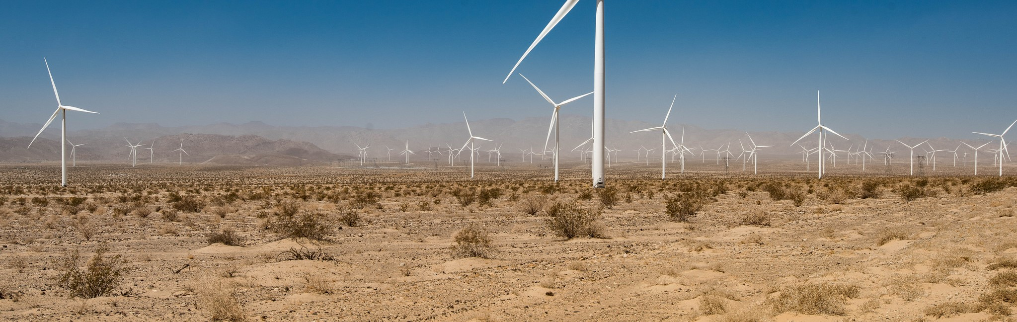 The Ocotillo wind farm in California, July 2016 (Photo: Daxis/Flickr)