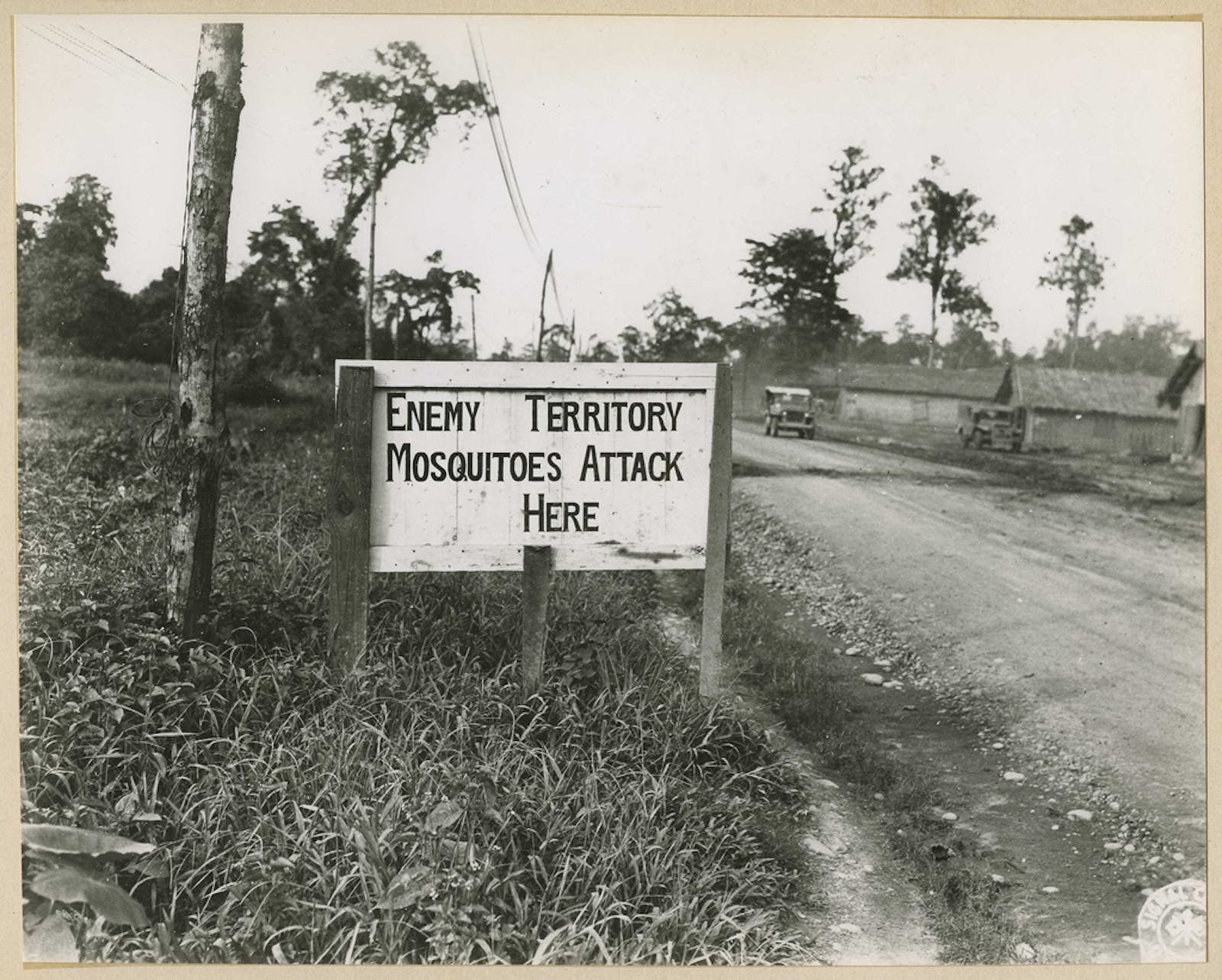 Malaria control efforts during the Second World War (Photo: National Museum of Health and Medicine/Flickr)