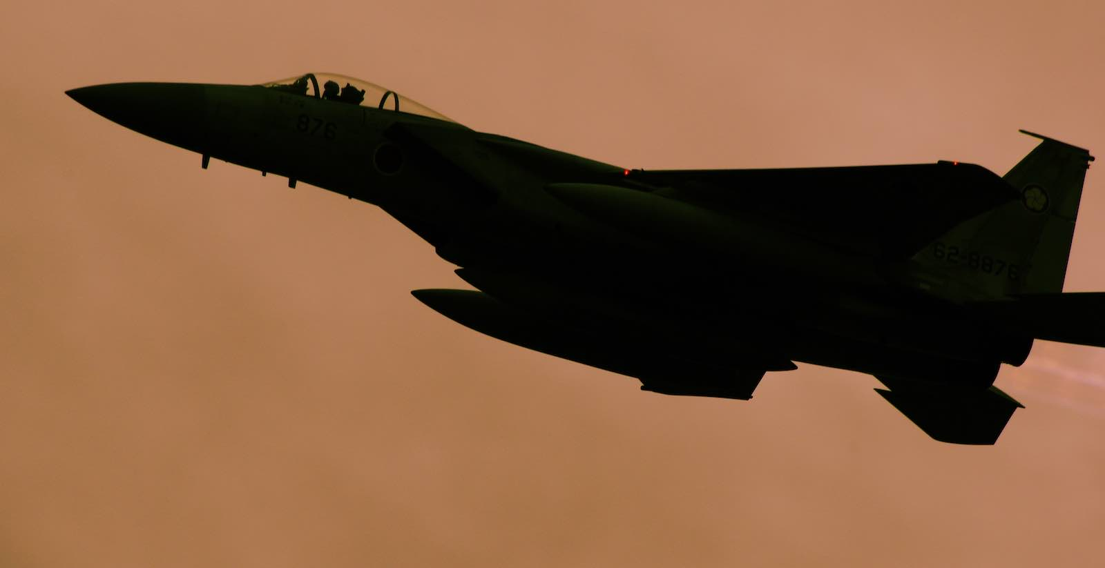 The F-15J is well suited for air policing tasks, having a fast cruise speed, a good range and endurance (Photo: A Shino/Flickr)