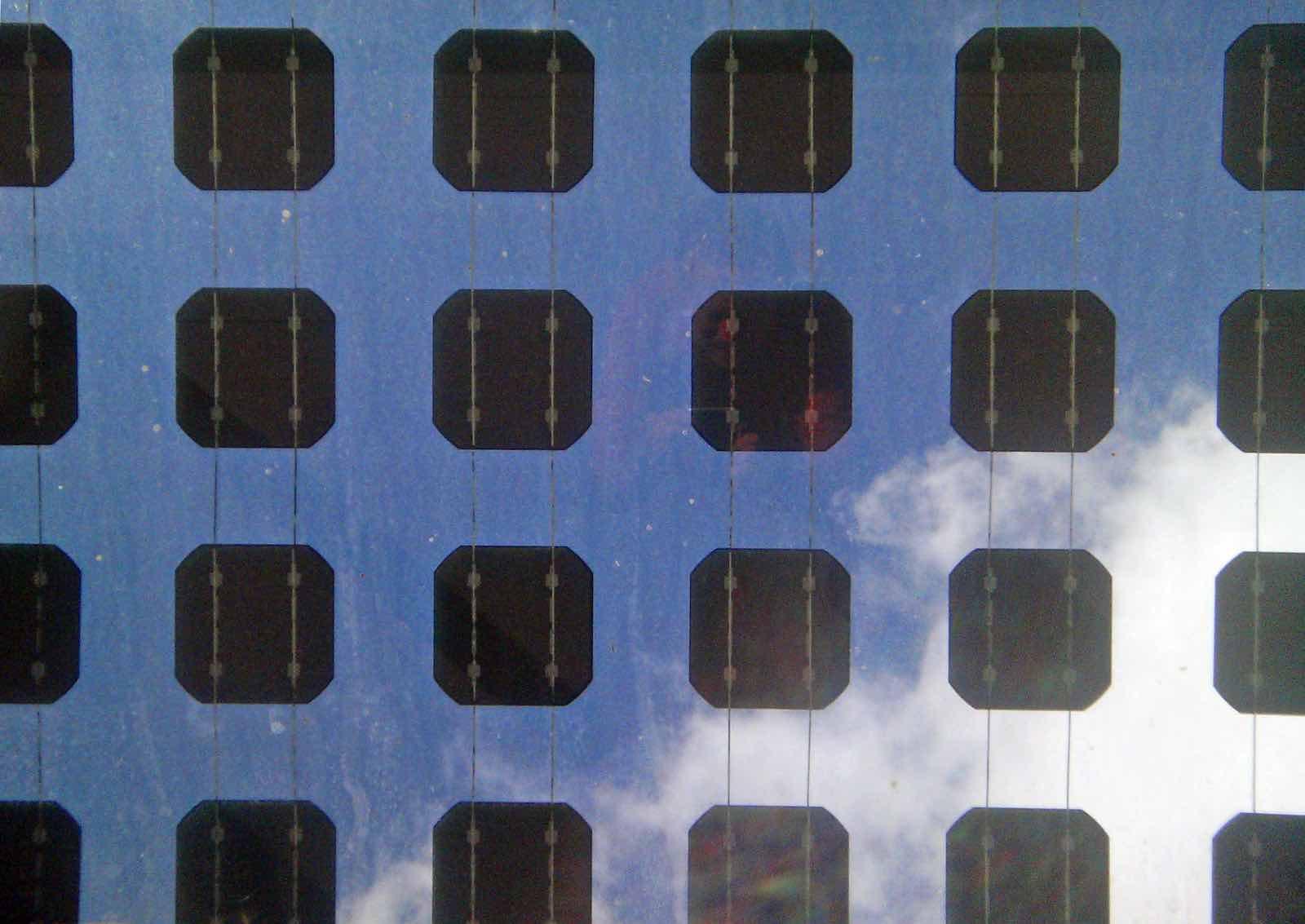 Solar panels (Photo: Rae Allen/Flickr)
