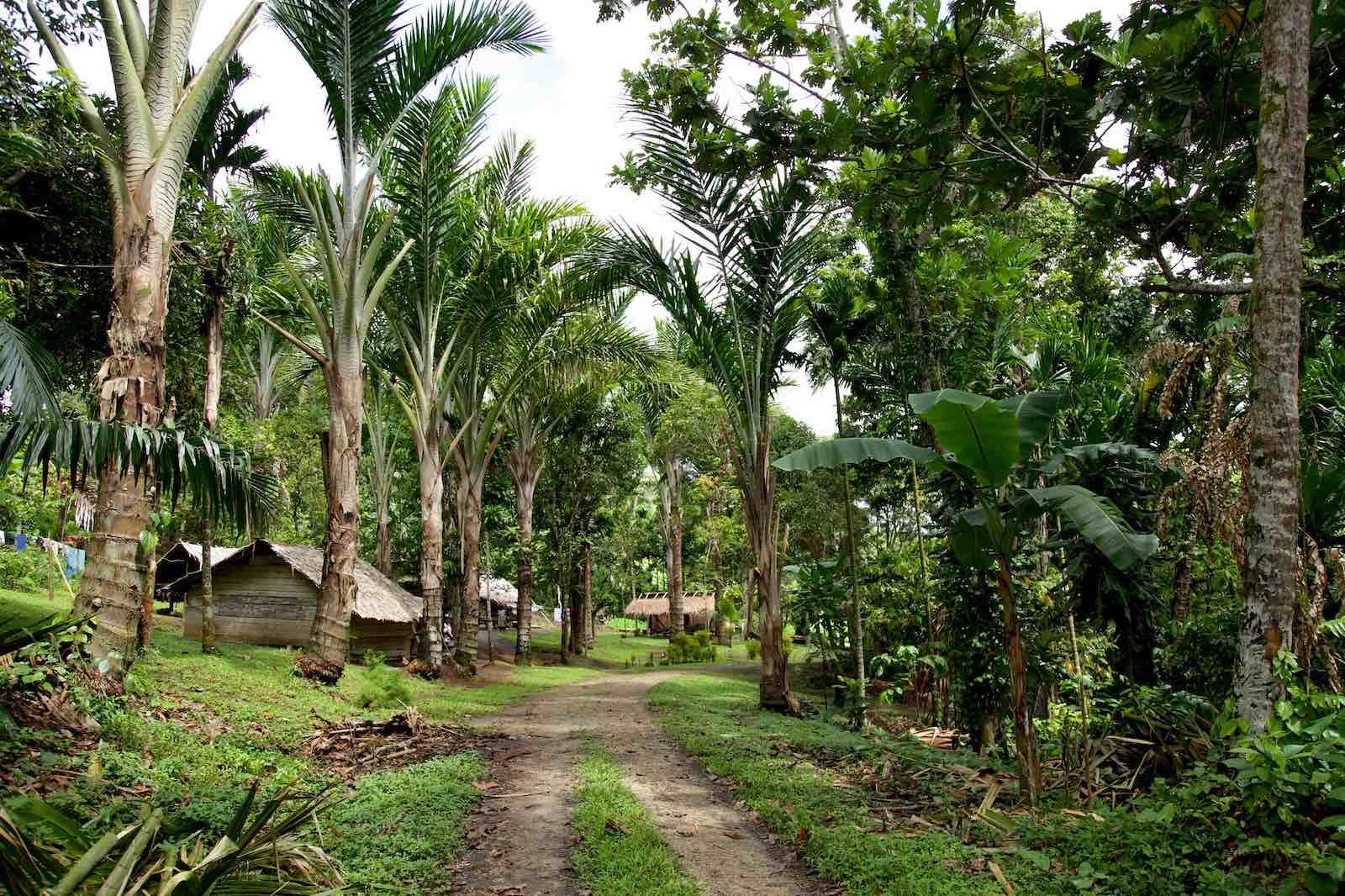 Village on Buka Island, Bougainville (Jeremy Weate/Flickr)