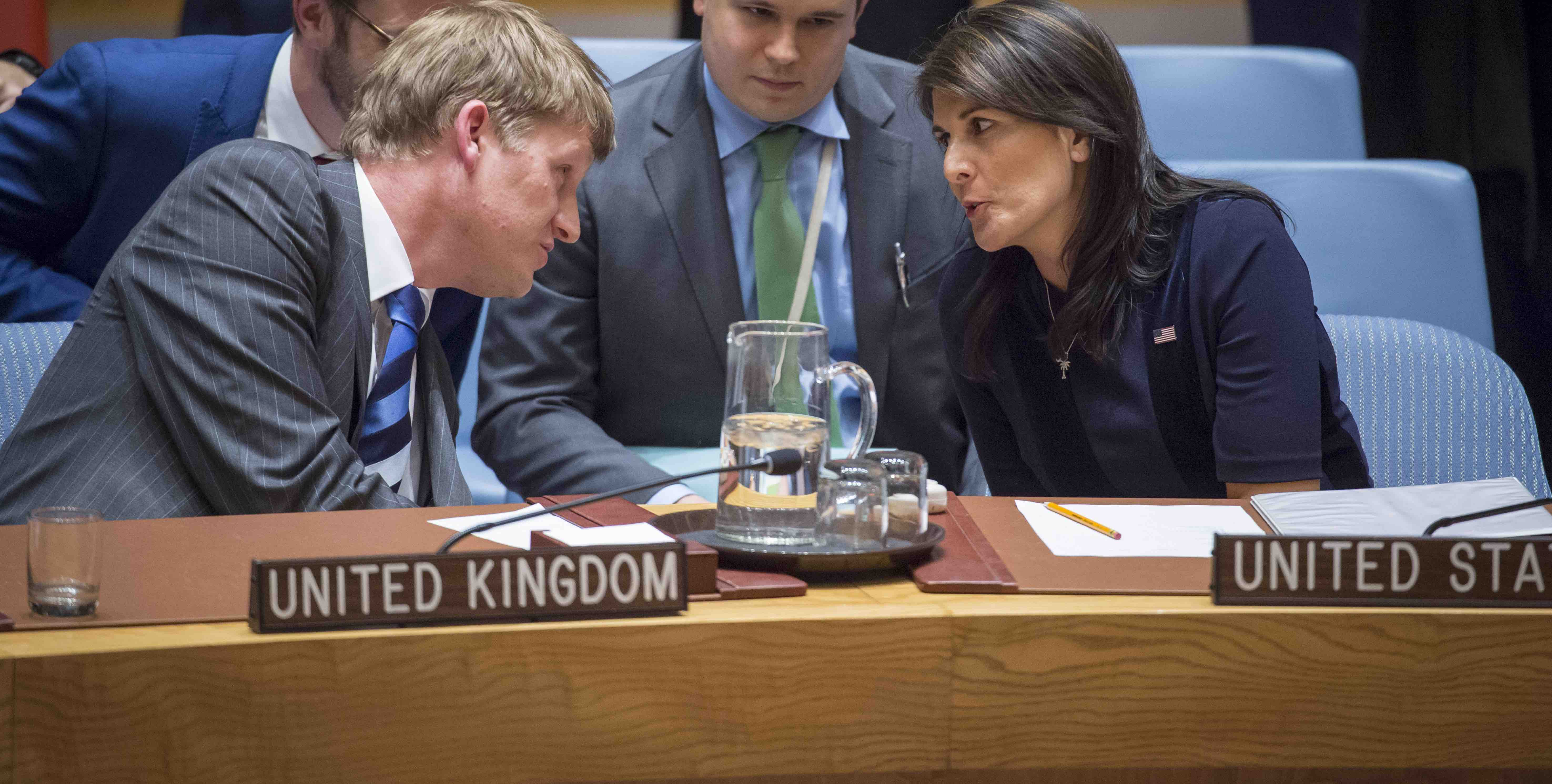 The UN Security Council hears UK allegations of a Russian nerve agent attack in Britain (UN Photo)
