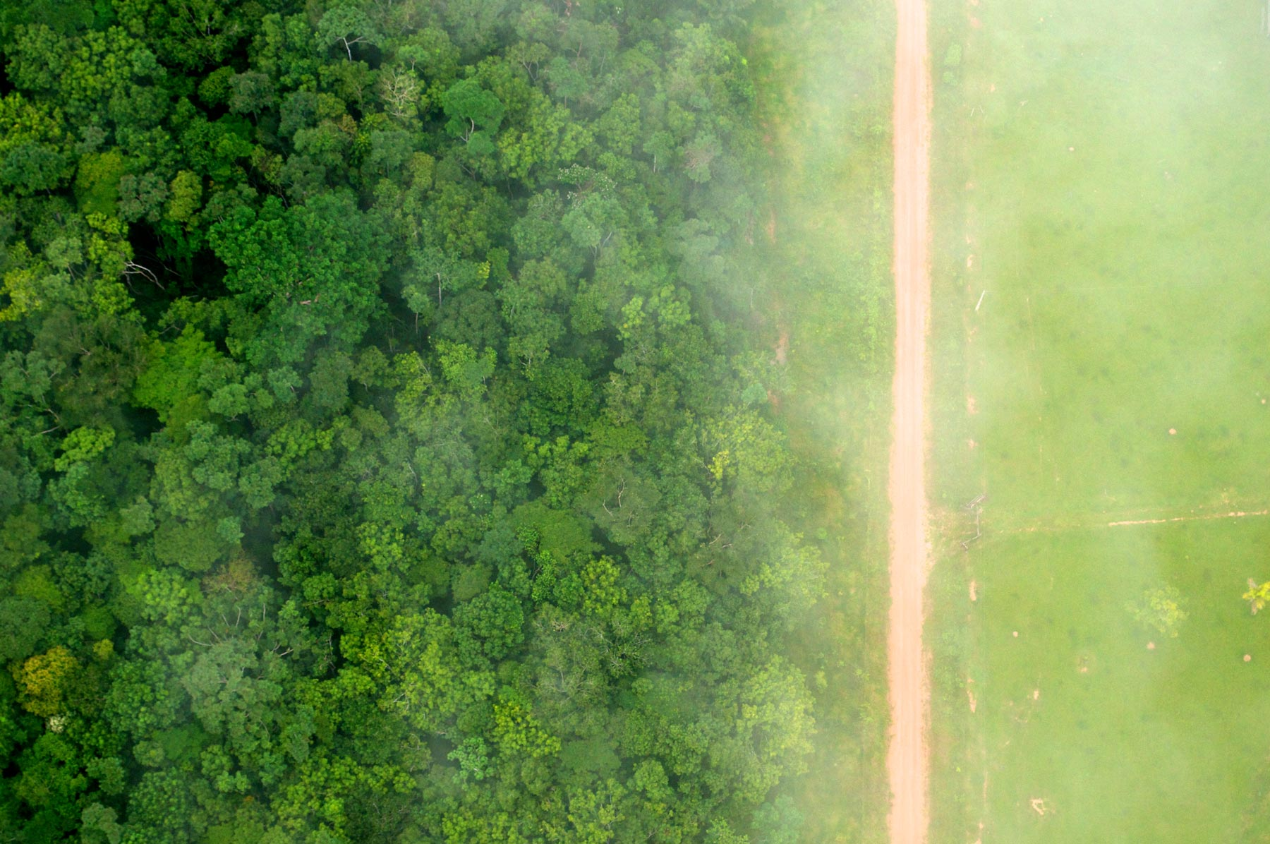 Photo by Kate Evans for Center for International Forestry Research (CIFOR)/Flickr