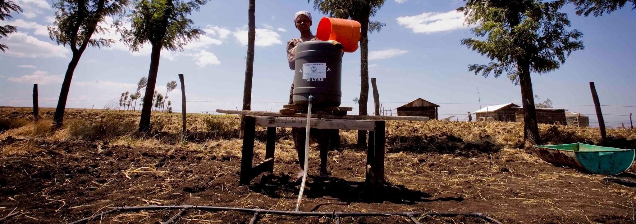 The AusAid Self Help Development Initiative helped Kenyans like Beth Wanjero irrigate using a drip watering kit. (Photo: Flickr/DFAT/2009)