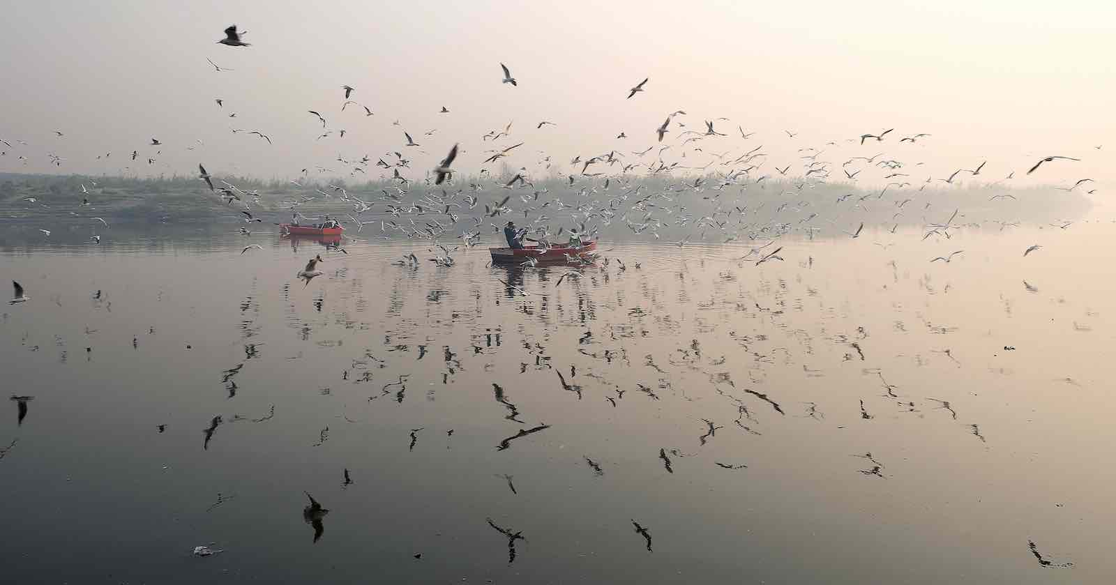 Yamuna River on a morning of heavy air pollution in New Delhi on 27 November 2018 (Photo: Noemi Cassanelli via Getty)