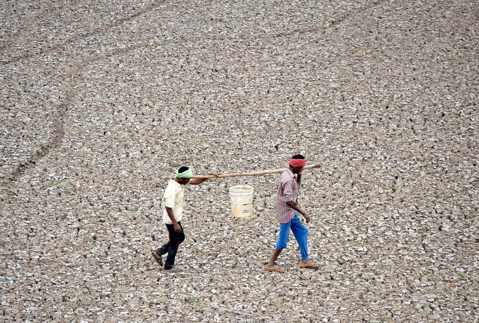 Carrying the last water from a pond in the dried-out Puzhal reservoir on the outskirts of Chennai (Photo: Arun Sankar via Getty)