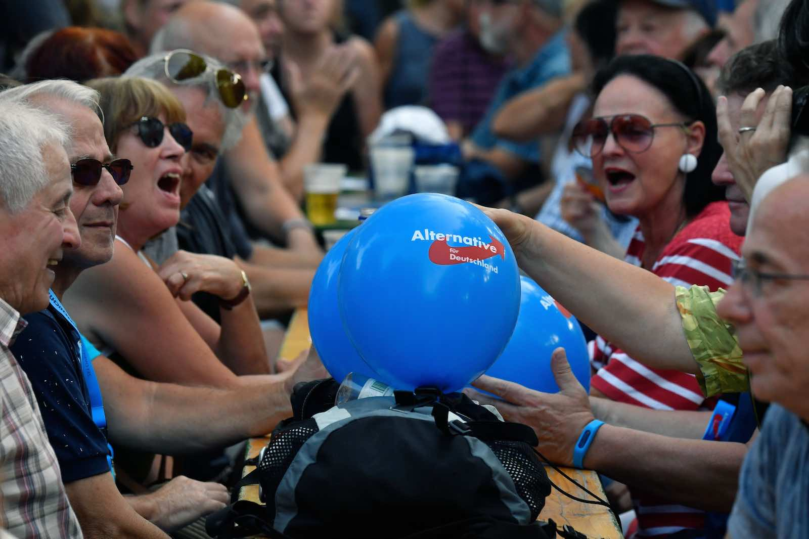 An election rally of the far-right party Alternative for Germany ahead of state elections in Brandenburg and Saxony (Photo: John MacDougall/AFP/Getty Images)
