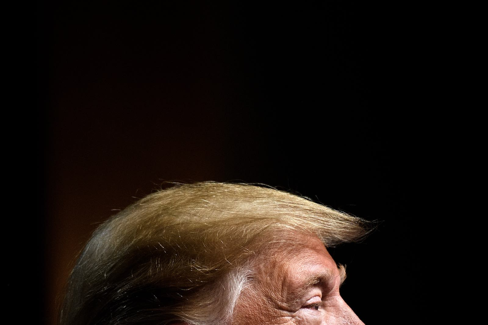 Trump will leave historians much to ponder (Photo: Brendan Smialowski/AFP via Getty Images)