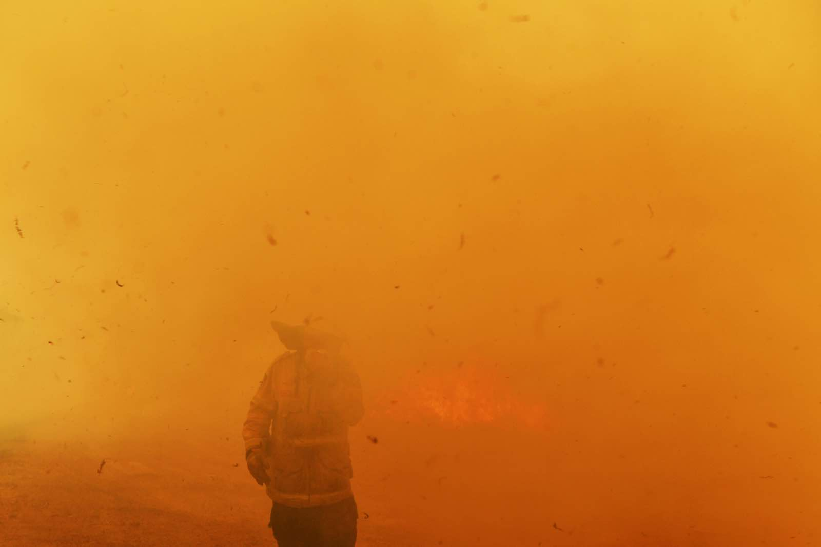 Catastrophic fire conditions – the highest possible level of bushfire danger – have afflicted eastern Australia in the last week (Photo: Sam Mooy/Getty Images)
