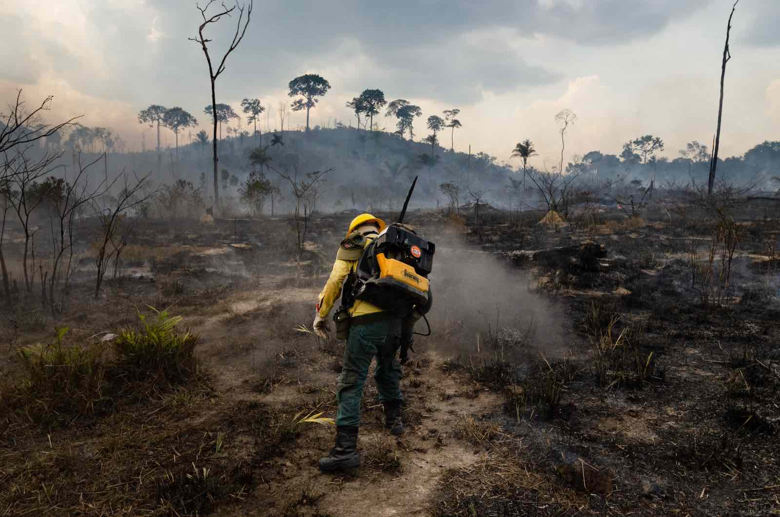 A member of the forest fire brigade fights burning in the Amazon, in Para state, northern Brazil,  September 2019 (Gustavo Basso/NurPhoto via Getty Images)