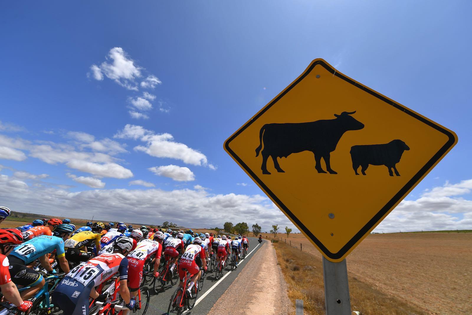Not so fast (Tim de Waele/Getty Images)