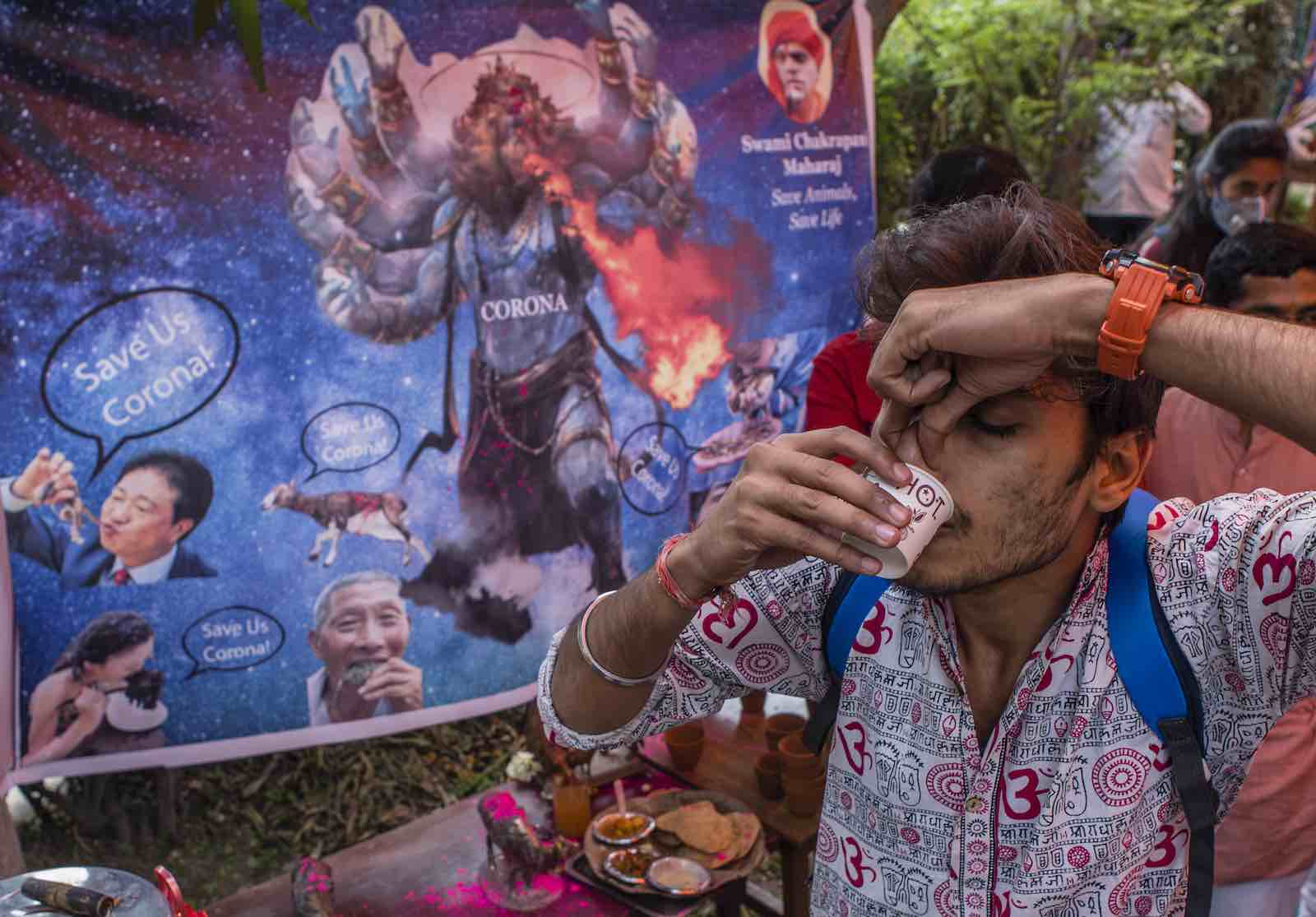 A urine drinking party to cure coronavirus infection, hosted by the Hindu organisation Akhil Bharat Hindu Mahasabha, 14 March in New Delhi, India