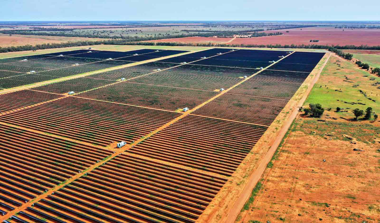 Solar farm in Nyngan, New South Wales (Andrew Merry/Getty Images)