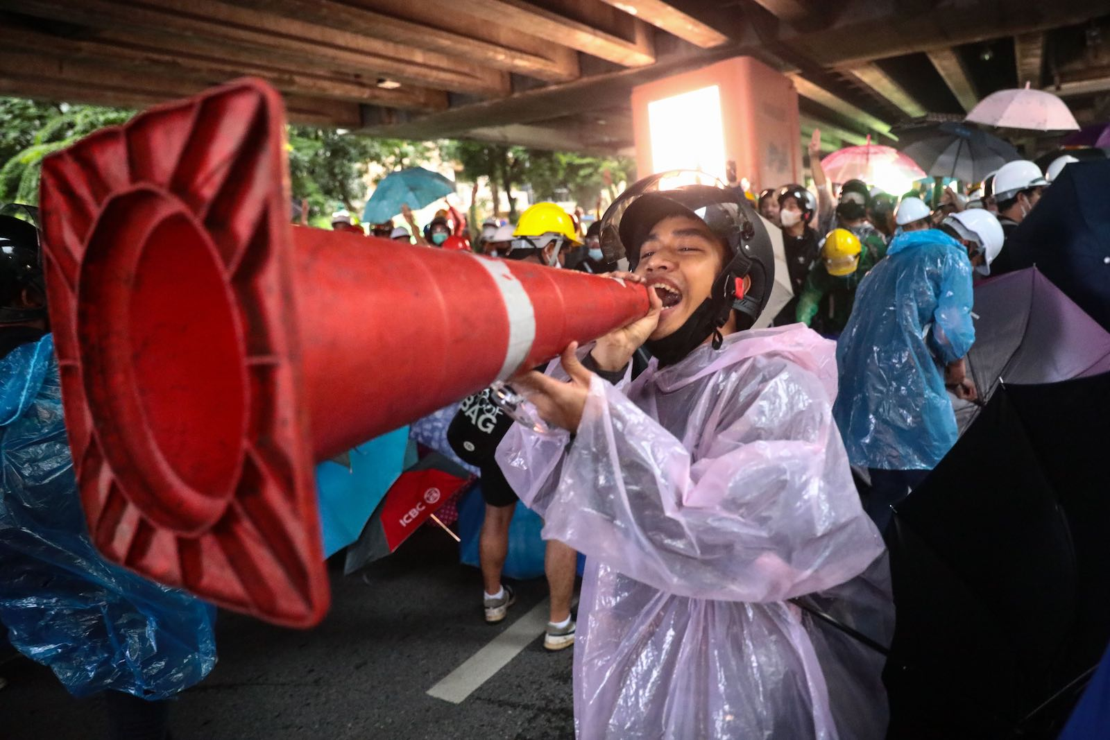 A pro-democracy protestor at a rally in Bangkok, 18 October 2020 (Jack Taylor/AFP via Getty Images)