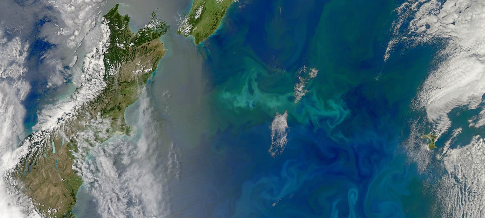 An expansive bloom of phytoplankton traces colourful swirls across the South Pacific Ocean off New Zealand (Photo: NASA Visible Earth)