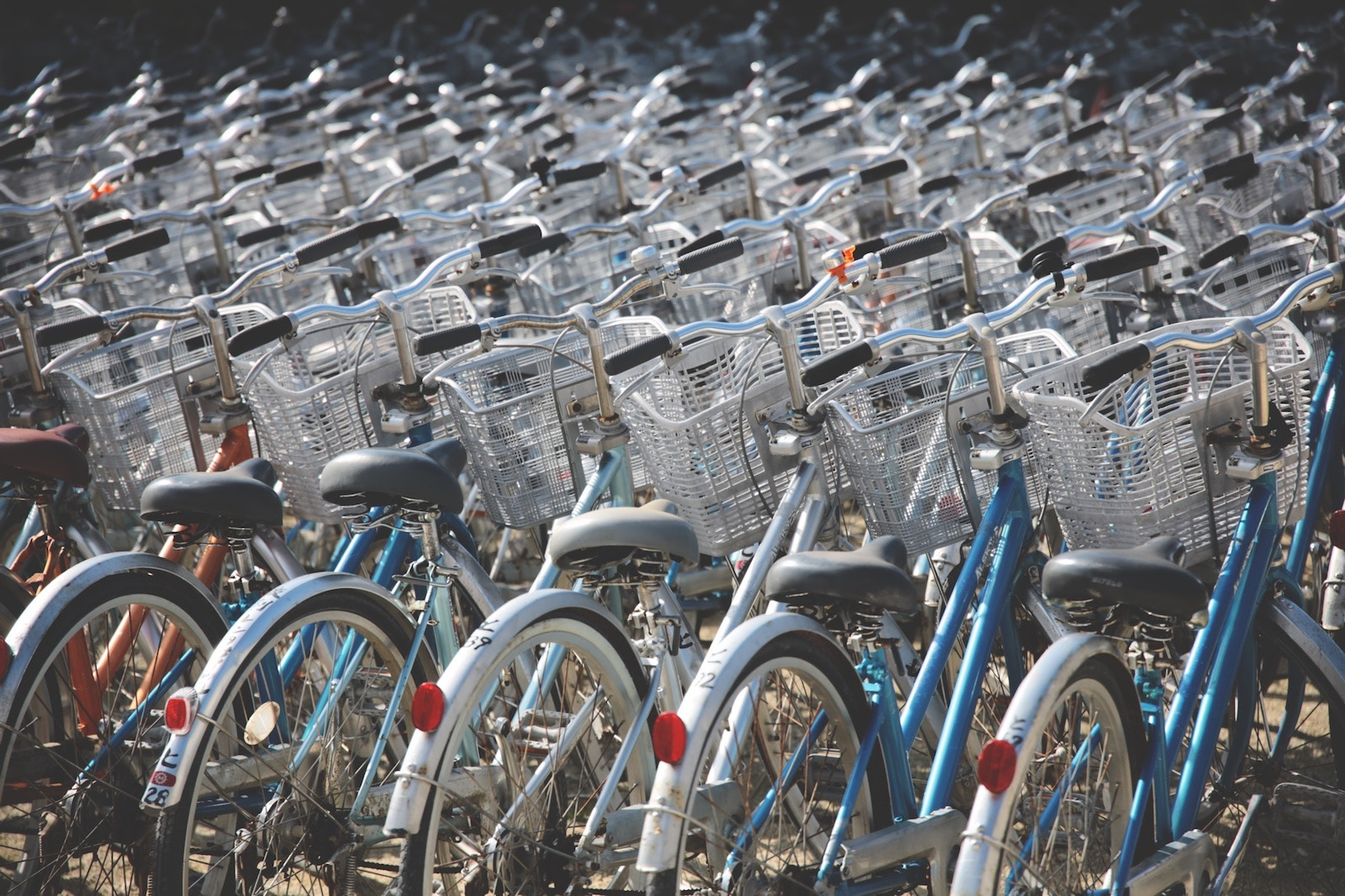 The Red Cross will bring 500 bicycles from China for volunteers to deliver medication to rural and mountainous areas (Photo: Berto Macario/ Unsplash)
