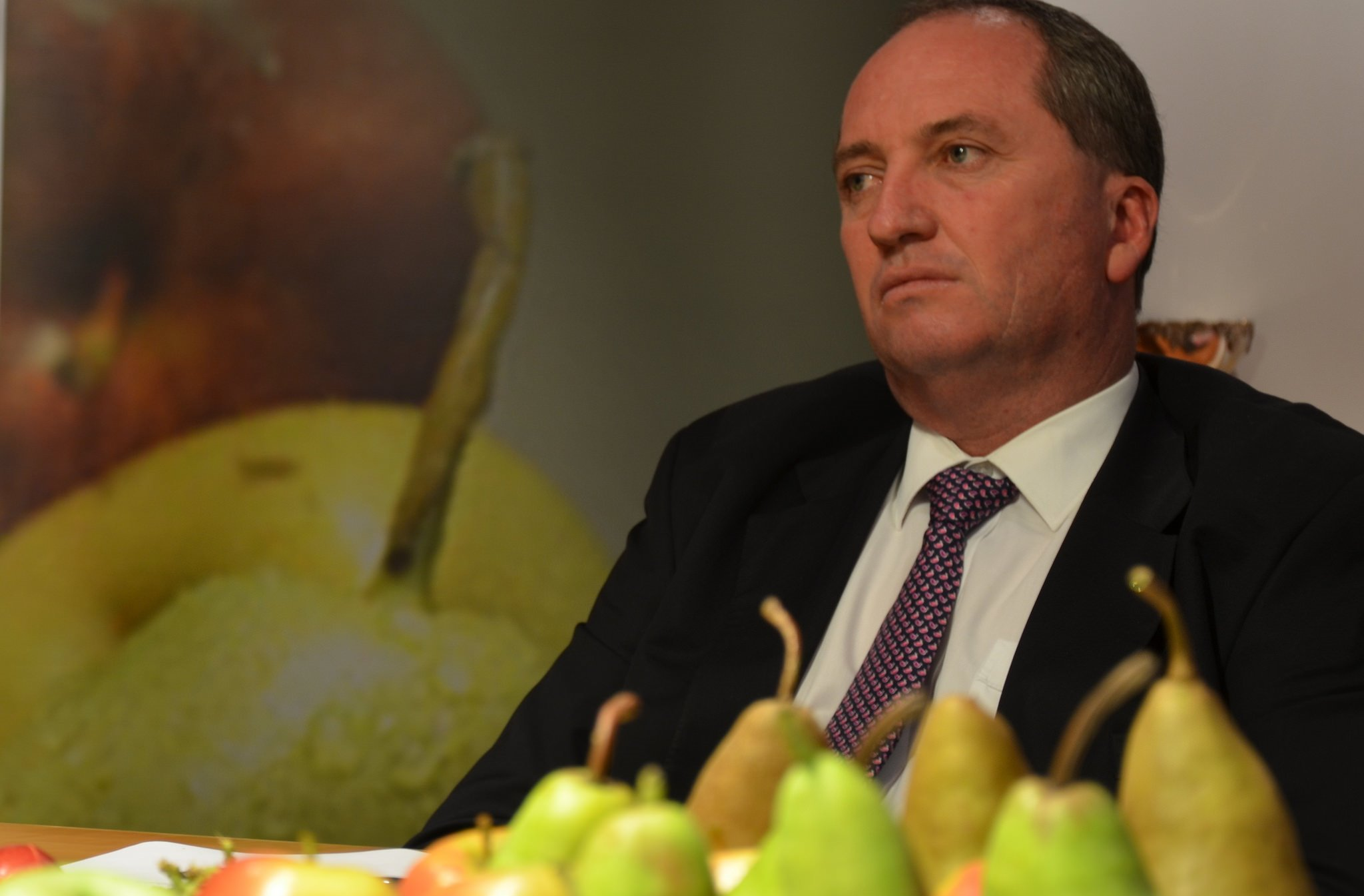 Barnaby Joyce in 2014. (Flickr/Apple and Pear Australia)