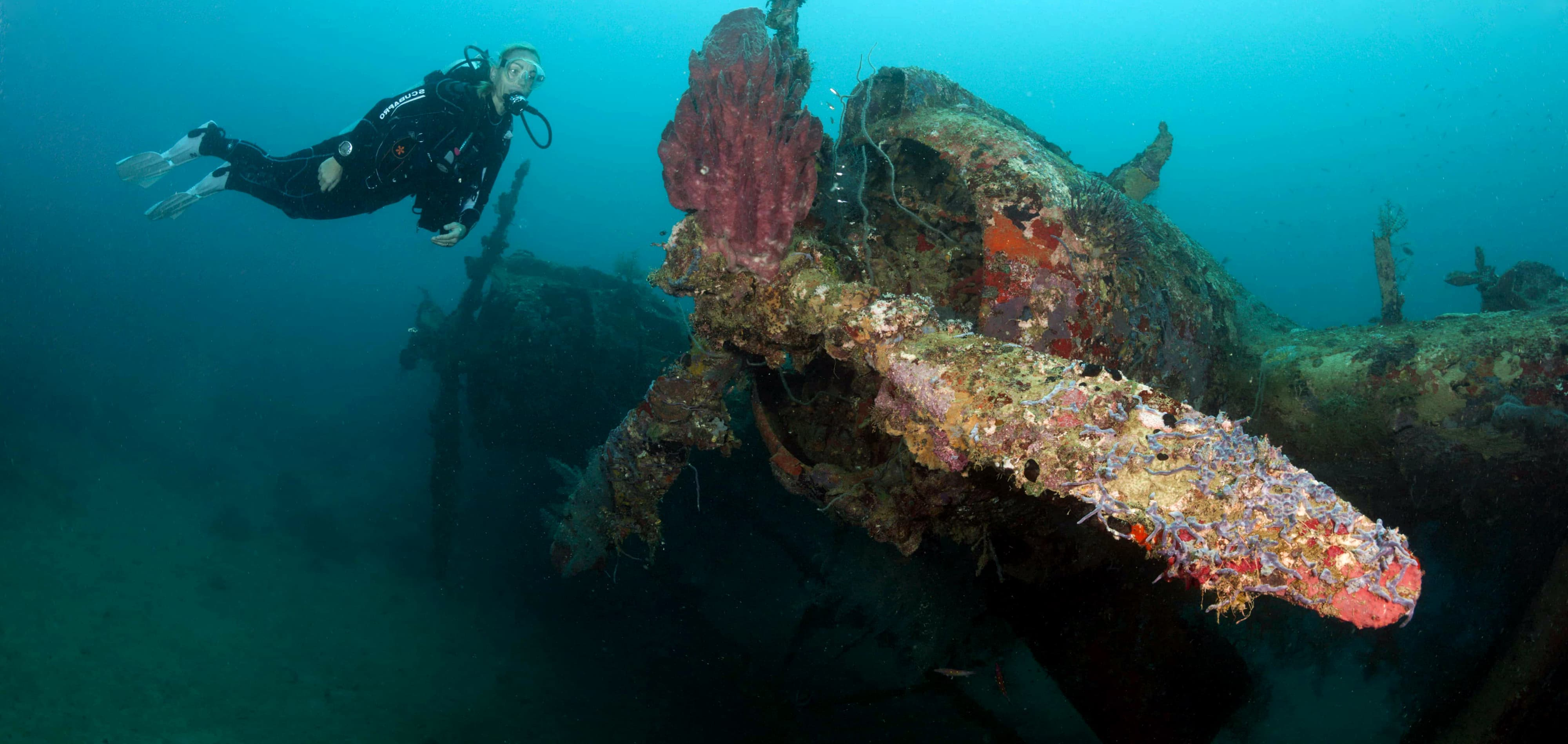 Kawanishi H6K5 Flyingboat Wreck, Nggela (Florida) Islands, Solomon Islands (Photo: Prisma Bildagentur/Getty)