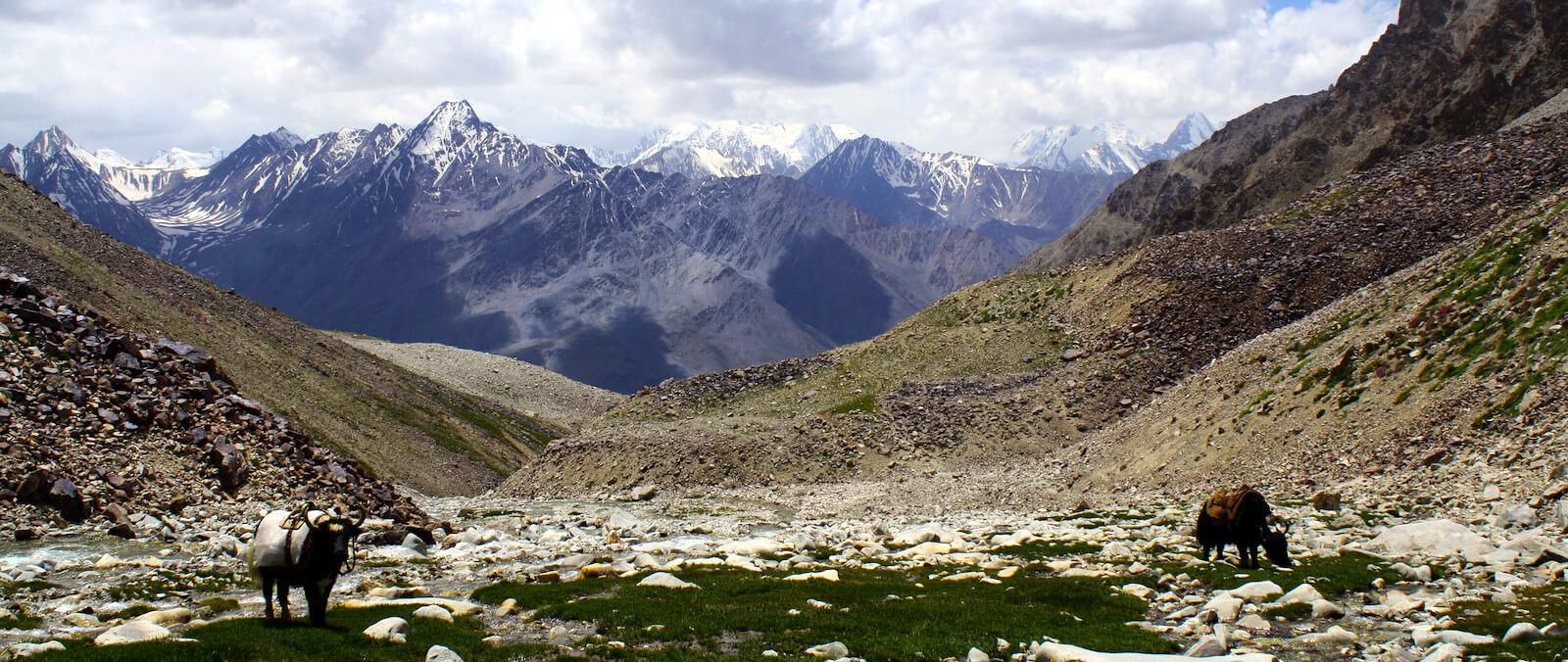View over the Hindu Kush, Afghan Wakhan Corridor (Photo: mstravels/Flickr)